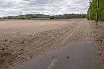 Pole v blízkosti Březí na Mikulovsku připomíná písečnou poušť.