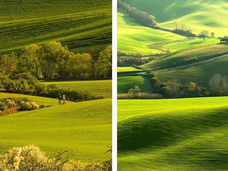 Zvlněné krajiny okolo Kyjova na Hodonínsku a v italském Toskánsku.