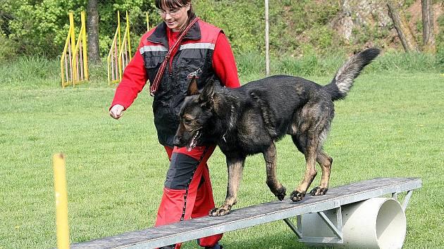 Mezinárodní zkoušky záchranných psů IRO.