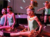 Devatenáctého ročníku mezinárodního tanečního festivalu neprofesionálních dětských tanečních skupin, školních družin a školních klubů se zúčastnilo třiatřicet tanečních skupin.