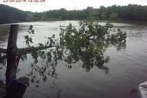 Před loď na Brněnské přehradě spadl strom