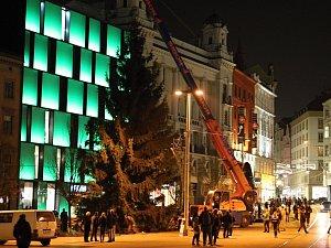 Vánoční smrk pro náměstí Svobody: Bílovice se loučily se stromem. Bez stromu