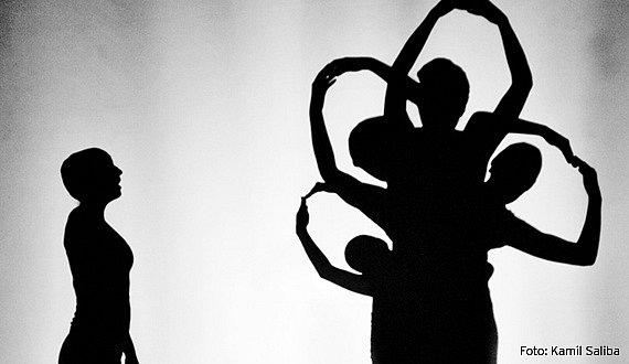 Inscenace Zeppo neboli také divadelní fantazie, která vypráví pohybem, tancem, akrobacií a stínohrou ocestě jednoho komedianta za svým osudem.