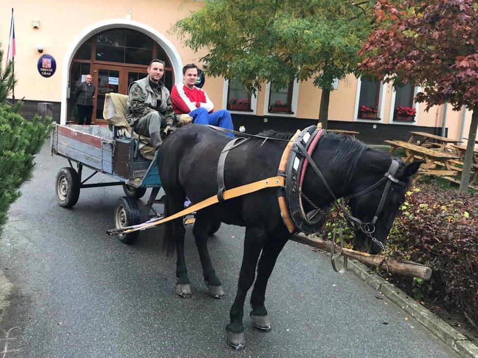 V Boskovštejně na Znojemsku přijeli lidé volit na koňském spřežení.