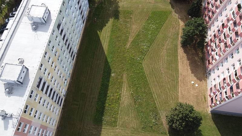 Metodu mozaikové seče vyzkoušeli v Kohoutovicích.