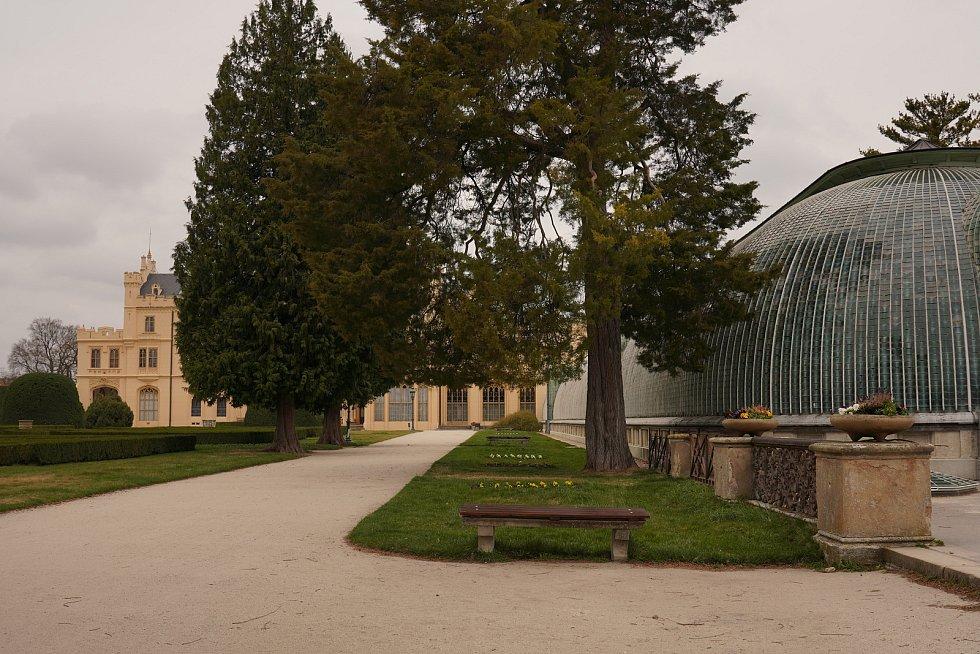Zámecký park v Lednici na Břeclavsku v sobotu 21. března 2020.