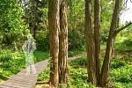 Návrhy studentů architektury a výtvarného umění Vysokého učení technického v Brně na podobu plánovaného parku Bohumila Hrabala v Židenicích.