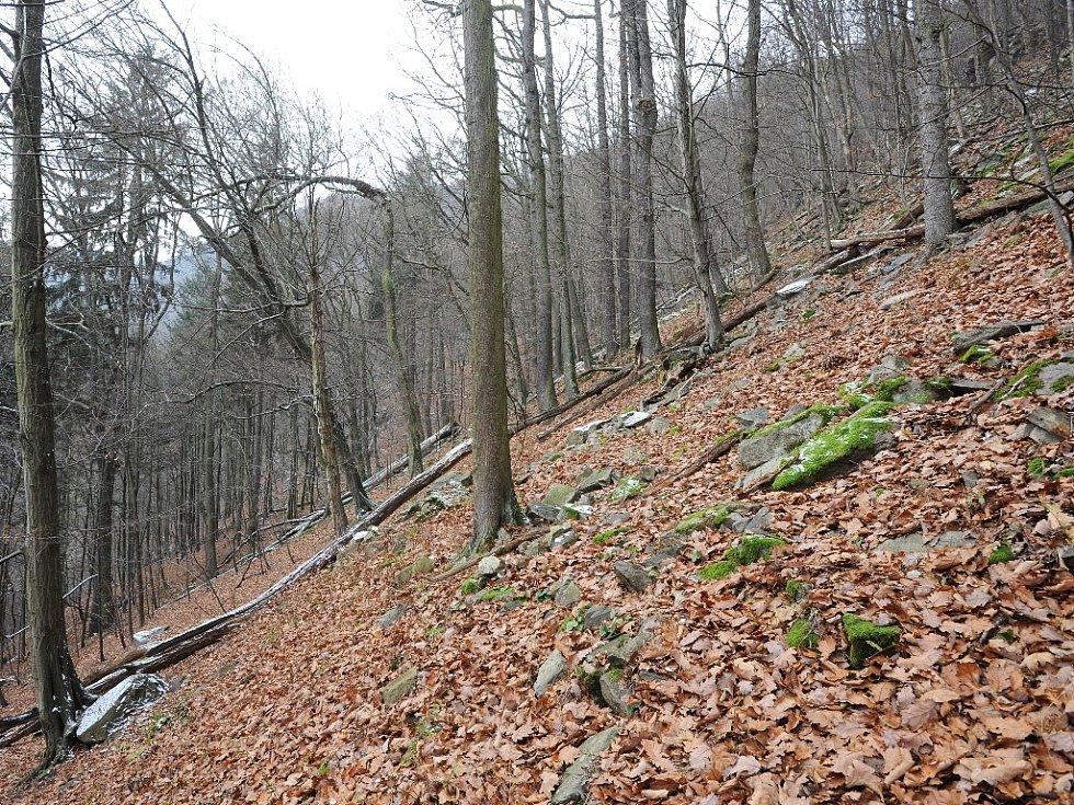 Rezervace Sokolí skála se tyčí nad řekou Svratkou u Doubravníku na Brněnsku. Kdysi tam hnízdili sokoli, ale lidé je vyhubili. Dodnes se tam ale vyskytují výři a krkavci. Poblíž je mlýn, kde žil a tvořil malíř Bohumír Matal.
