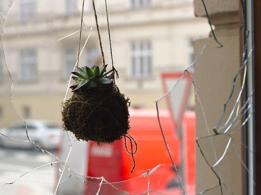 Brněnské kavárně Tři ocásci někdo rozbil dvě okna. Zastrašování a útokům čelil podnik už loni, když veřejně vyjádřil solidaritu s uprchlíky.