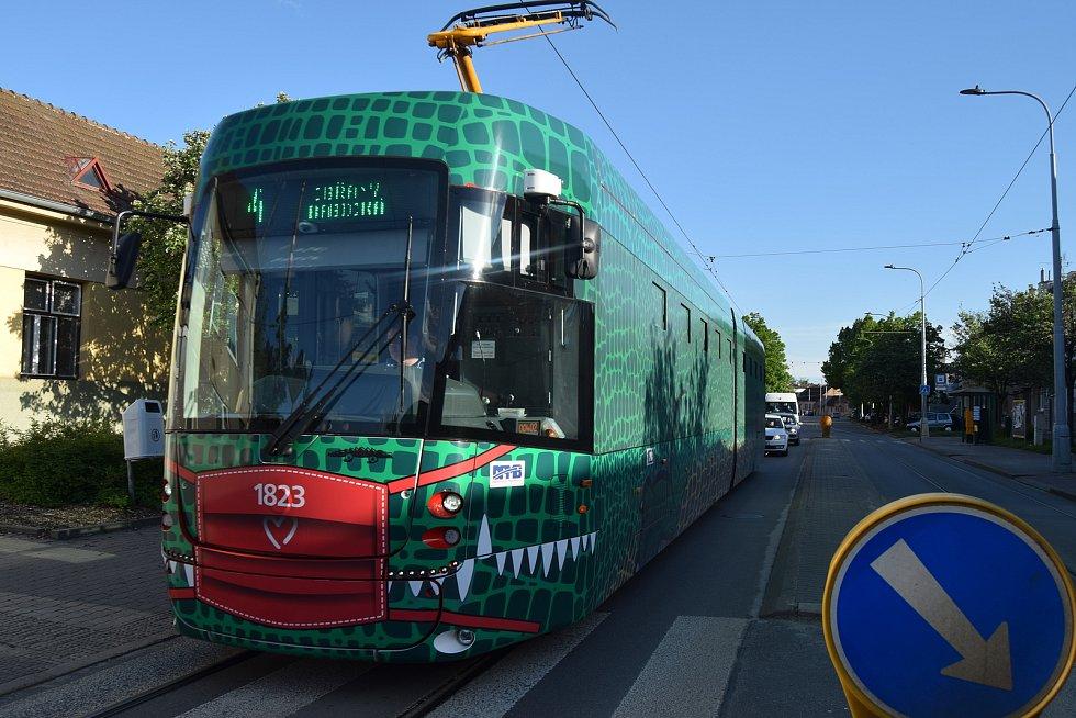 Brněnskými ulicemi jezdí už dvanáct nových tramvají Drak, na některých linkách se lidé svezou i staršími vozy.