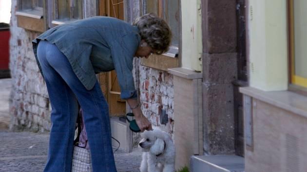V Ivančicích mají problémy s neukázněnými chovateli psů.