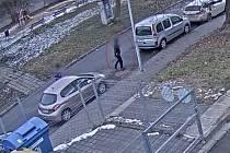 Napadal ženy a bral jim kabelky. Vypátrali ho s pomocí služebního psa.