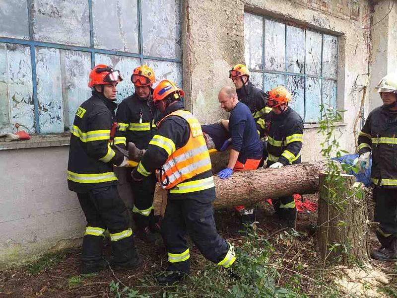 Hasiči nedávno pomáhali při záchraně zraněného muže v Pustiměři. Spadl na něj strom, stejně jako nyní na člověka v Jinačovicích.
