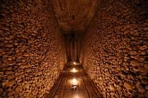 Kostnice u svatého Jakuba se veřejnosti otevřela v roce 2012. Co do počtu kosterních pozůstatků jde o druhou největší kostnici v Evropě (po pařížských katakombách) a je jednou z turistických atrakcí Brna.