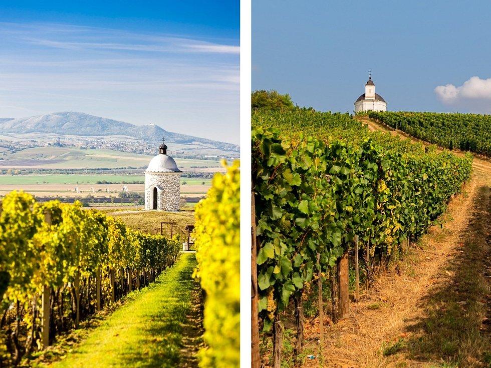 Kaplička u Velkých Bílovic na Břeclavsku a kaple Terézia ve vinařské oblasti Tokaj v Maďarsku.
