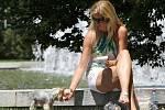 Během horkých dní lidé nejčastěji sahají po zmrzlině.