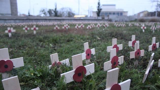 Okolo tisíce dřevěných křížů s vlčími máky ozdobilo trávník před sochou vojáka na Moravském náměstí. Připomínají válečné veterány.