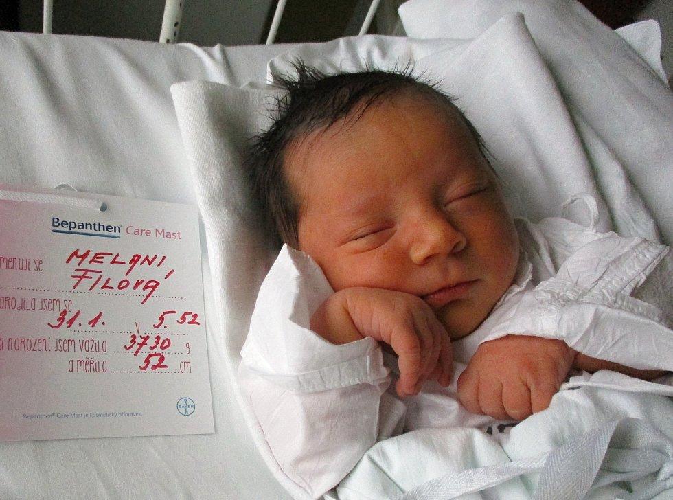 Melani Filová, 31. 1. 2021, Dolní Dunajovice, Nemocnice Břeclav, 3730 g, 52 cm