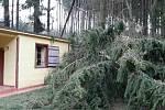 Popadané stromy a stržené střechy v neděli zaměstnaly jihomoravské hasiče.