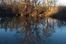 Za příjemného počasí vyrážejí Brněné na procházky k řece či kolem přehrady.