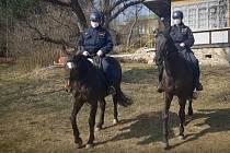 Policisté na koních kontrolují jihomoravské chaty.