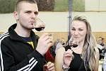 Košt vín ve Vranovicích.