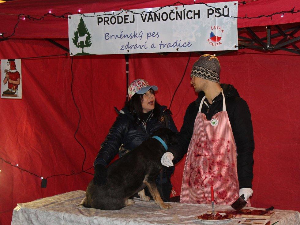 Aktivisté spolku Kolektiv pro zvířata v úterý v centru Brna předstírali zabíjení vánočních psů ve stejném stylu jako jsou zabíjeni vánoční kapři.