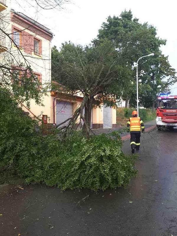 V brněnských Židenicích se při bouřce zlomil strom.