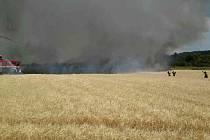 U Bosonoh lehlo popelem devět hektarů pole