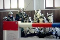 Farmaceutickou fakultu rozproudila koňská spřežení.