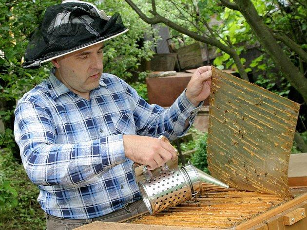 Včelaři na jihu Moravy postupně končí