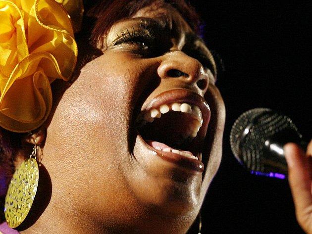 Harlem Gospel Choir vznikl před třiadvaceti lety a tvoří jej zpěváci z kostelů z amerického Harlemu.