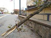 Na Znojemsku lámal vichr stromy,  kácel značky i billboardy. Hasiči měli výjezd i do Čermákovy ulice,  kde se uvolnil kus plechu na střeše a hrozilo, že rozbije okno.
