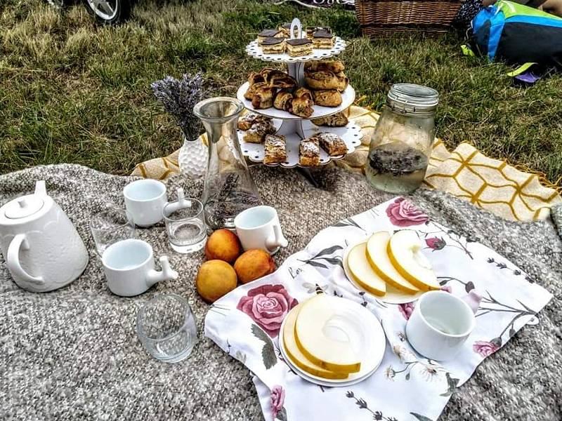 Akce Česko jde spolu na piknik vyzvala lidi z různých míst naší země, aby pořádali ve stejný čas piknik. Na snímku akce v Městci na Nymbursku.