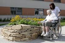 Jak vypadá sedmikráska nebo zvuk tekoucí vody. Takzvaná zahrada paměti, kterou v pondělí nově otevřeli v domově důchodců v Zastávce na Brněnsku, je určená hlavně starším lidem s demencí, aby jim připomněla vjemy z mládí.