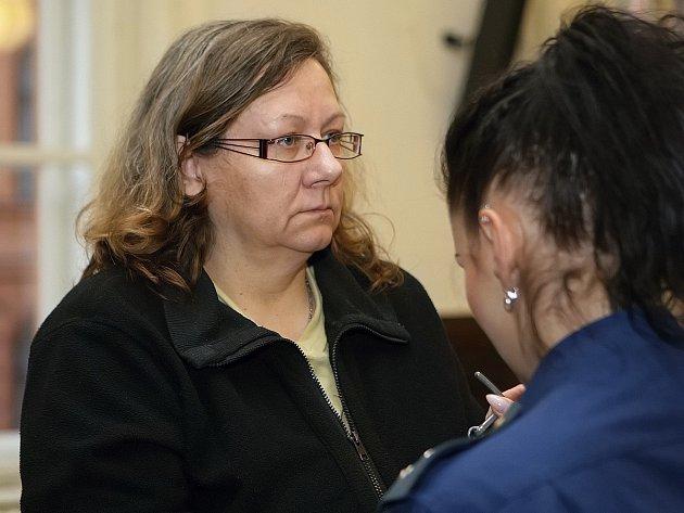 Dana Niederlová u Krajského soudu v Brně. Obžaloba ji viní z toho, že z firmy na Brněnsku vyvedla více než 110 milionů korun. Teď ženě hrozí až deset let vězení.