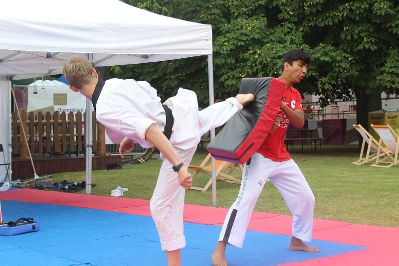 Síly si nadšenci na olympijském festivalu poměřili také v taekwondu.
