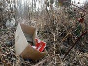 Poházené plastové lahve a plechovky v parcích, černé skládky v lese nebo krabice od vína u řeky. Nepořádek, který hyzdí veřejný prostor, se 8. dubna už počtvrté vydají Brňané uklidit. Startuje akce s názvem Ukliďme Česko.