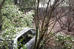 Osobní auto, které zůstalo stát šest metrů pod srázem porostlým dřevinami, vyprošťovali v úterý po sedmé hodině ranní v Židlochovicích hasiči.