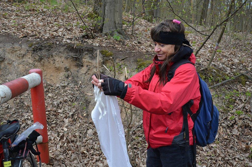 Bioložka Alena Žákovská ve čtvrtek nasbírala dvaatřicet klíšťat u cesty v lese za Anthroposem.