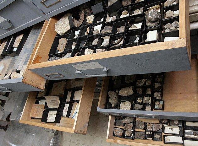 Moravské zemské muzeum zatím uskladňuje exponáty například v Biskupském dvoře.