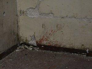 Unikátní nález. Ve věznici na Cejlu našli stopy krve, asi důkaz brutálních činů