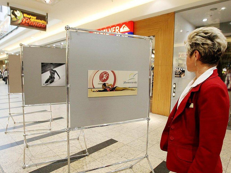 Vítězné fotografie soutěže Zachyťte krásu pohybu vystavují v brněnské Galerii Vaňkovka.