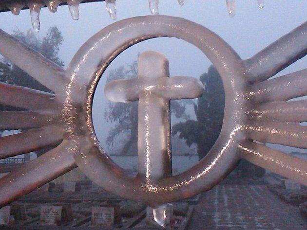 Ive středu ráno byly stromy a keře ve Znojmě stále jako za sklem. Teploty nad nulou je ale postupně vysvobozovaly ztěžkého ledového kabátu, podobně iploty či střechy domů.