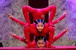 Čínský národní cirkus v úterý večer v Brně uvede svoji novou akrobatickou show s názvem Grandhotel Hong Kong – Svět návštěvníka Říše středu.
