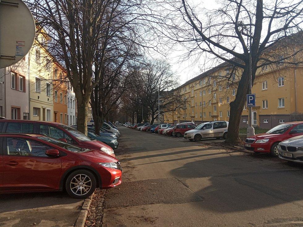 Vzrostlé lípy lemují silnici ve Vodově ulici.
