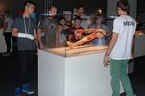 Děti z dětských domovů si prohlédly preparovaná lidská těla.