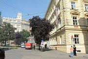 Na dvoře budovy rektorátu Masarykovy univerzity v Brně vybuchly plynové bomby.