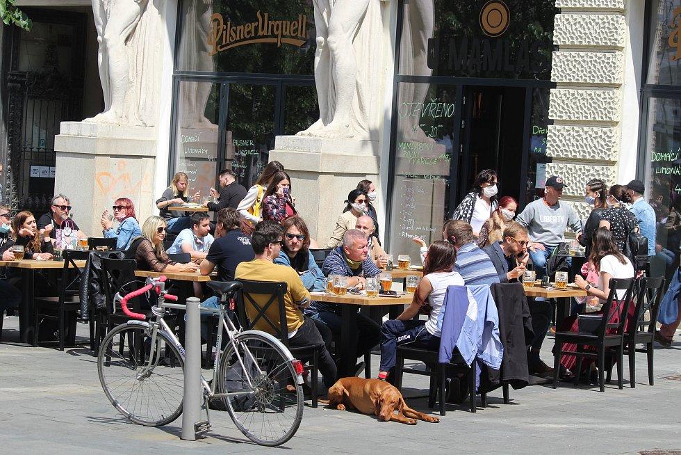 Restauratéři v centru Brna si mohou zahrádky nachystat ještě dřív, než pandemická situace umožní otevření.
