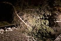 Popadané stromy na silnicích. Ilustrační foto